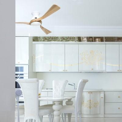 ventilateur Plafond Eco regento